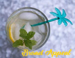 Melissa Fassel Dunn's Elderflower Spritzer cocktail on Broad Appeal